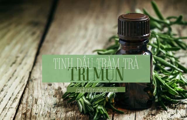 Dùng tinh dầu trị mụn tràm trà
