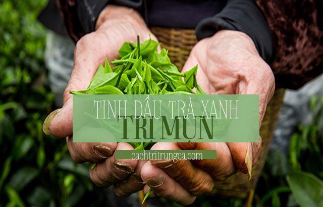 Dùng tinh dầu trị mụn trà xanh