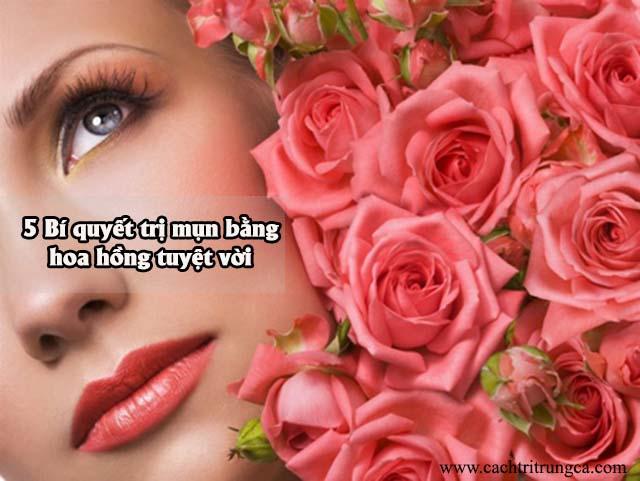 Hoa hồng có công dụng trị mụn