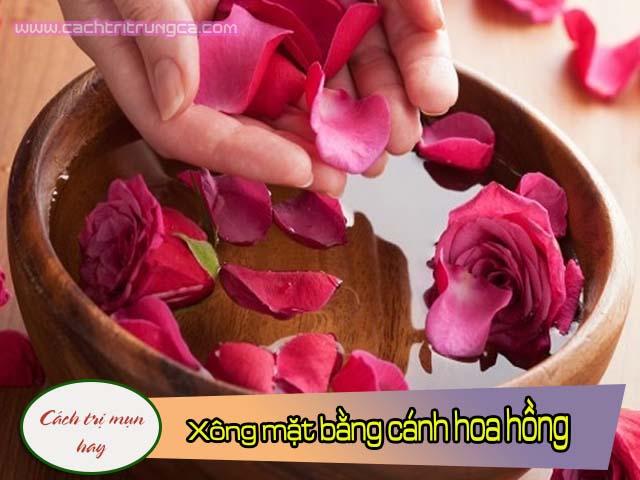 Trị mụn bằng hoa hồng và nước tinh khiết
