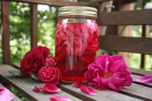 Hướng dẫn cách làm giấm hoa hồng tại nhà trị mụn an toàn