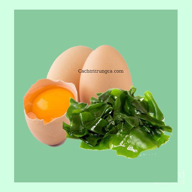 Dùng mặt nạ dưỡng da từ trứng gà và rong biển - mặt nạ dưỡng da từ thiên nhiên