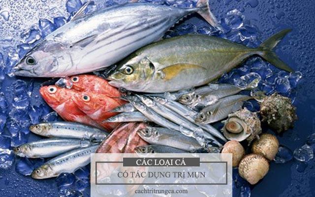 Ăn cá thường xuyên giúp hỗ trợ trị mụn tốt